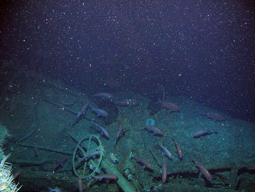 Wreck of Australia's first submarine found after 103 years